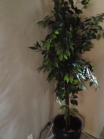 Indoor Fake Tree - $30 (Victoria)
