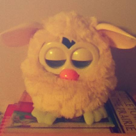 Furby For Sale  -   x0024 30  Sooke Bc