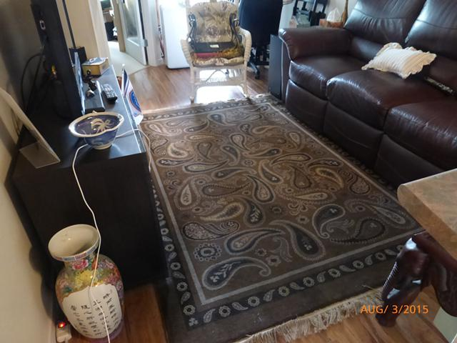 50  Carpet  area rug