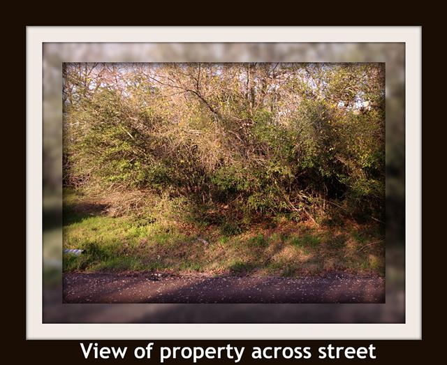 1 waterfront Main Lake 1 off-water lot in Hickory Hill