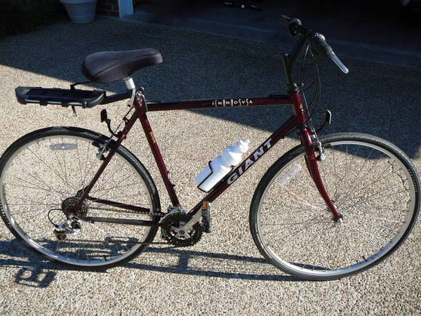 Giant 700 bicycle mens - $200 (robinson)