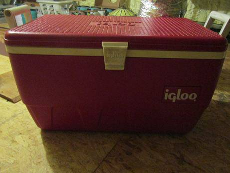 LARGE IGLOO COOLER - $20 (AXTELL)