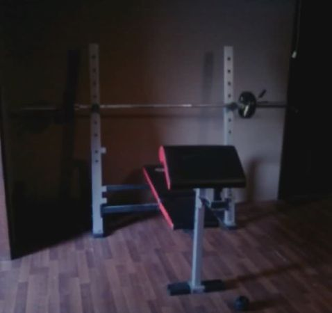 Golds Gym weight bench, w curl bar, and 250lbs of weights w tree - $200 (Sanger)