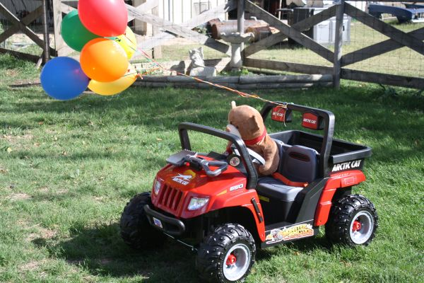 Red Artic Cat (power wheels) - $170