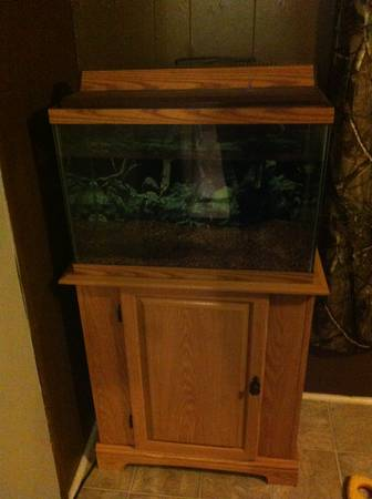 20 gallon fish tank with stand - $125 (China Spring )
