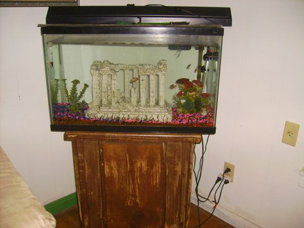 30 GALON FISH TANK with STAND. - $100 (Waco)