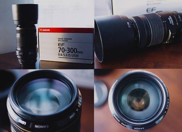 Canon 70-300 IS USM Lens w  Hood  Sharp Condition  -   x0024 350  West