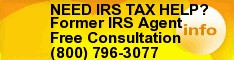 IRS Tax Issues Enrolled Agent 20 Years